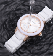Waterproof quartz fashion temperament ladies watch