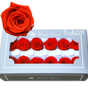 12 roses with immortality