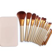 Makeup Brush Set 12 Sets of Brush Iron Box Packaging