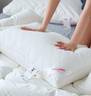 Cotton pillow core