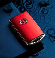 Car key case