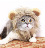 Funny Pet Hat For Small Dogs Cats Hat Emulation Lion Hair Mane Ears Head Cap Scarf Pet Halloween Festival Costume