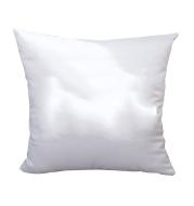 Advertising gift pillow customization