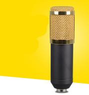 Large-diaphragm condenser microphone