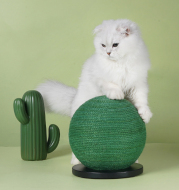 Cat Scratching Ball Board Toy Cactus Shape Scratch Sisal Post