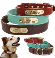 Personalized Dog Collars with Nameplate ID Tags for Medium Large Dogs