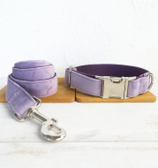 Collar and leash for pet dogs
