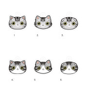 Cat name brand customized identity card bell