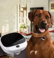 Mini Cat Anti-Loss Tracker Quickly Locate Pet Collar Portable Pet Collar With LED Light Waterproof Collar Smart Hound Locator