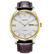 Automatic mechanical leisure waterproof watch for men