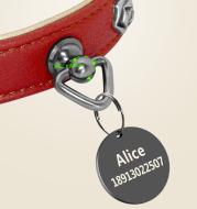 Pet leather collar