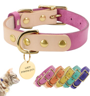 Personalized Custom Dog Cat Leather Collar