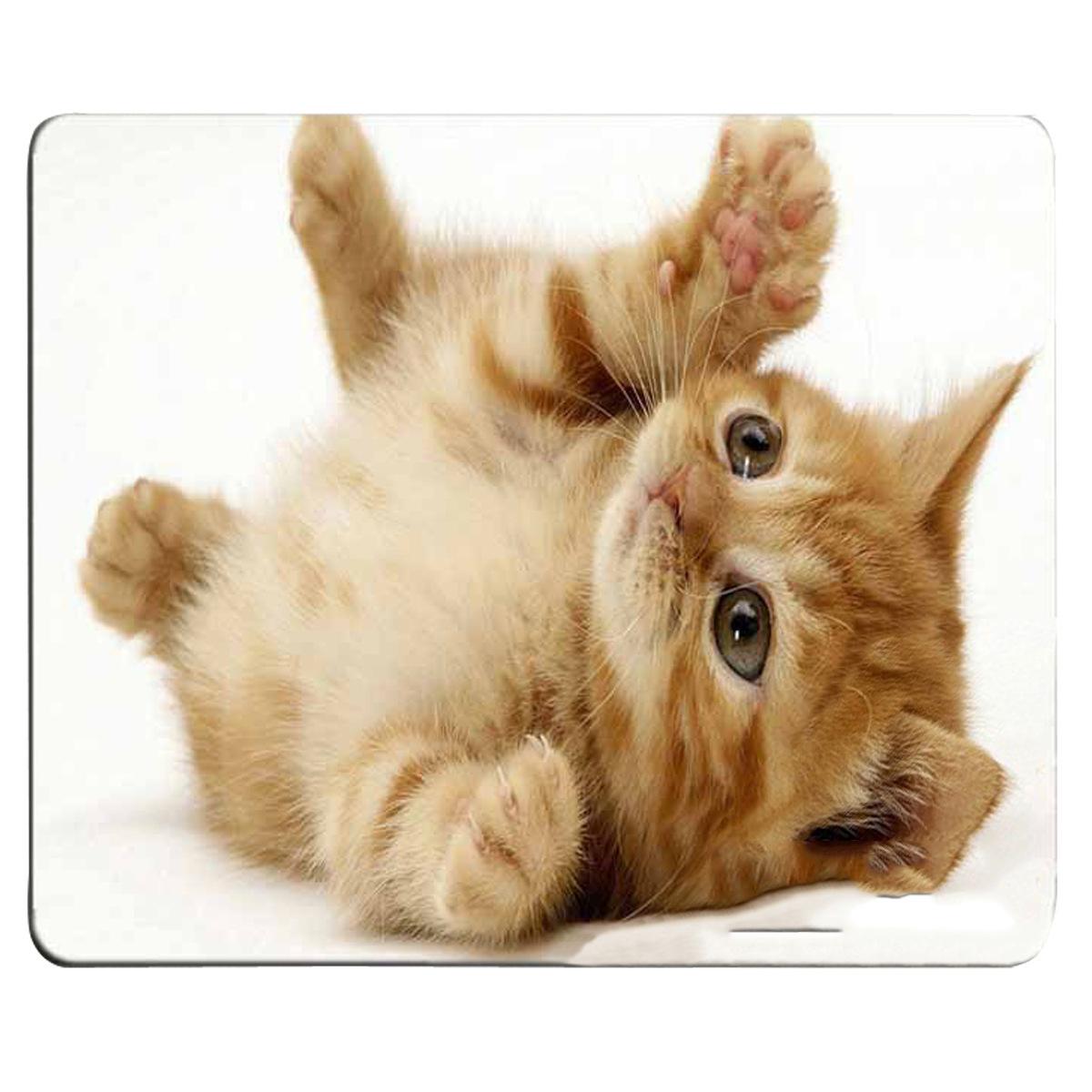 tapis de souris chaton qui s'amuse sur le dos