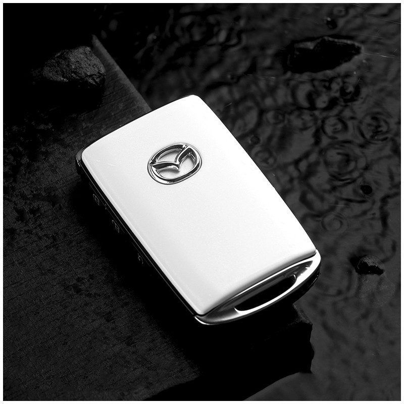 Car key case allinonehere.com