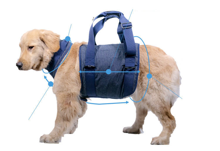 Adjustable Pet Dog Harness Auxiliary Belt | Elderly Dogs Balance Safety Walking Harness