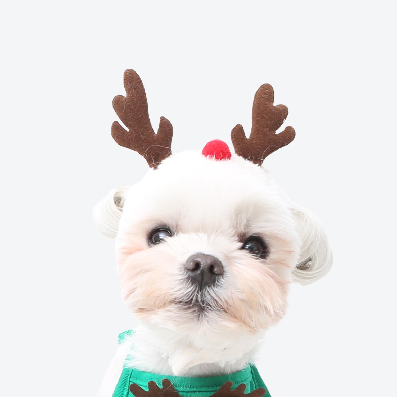 puppy costumes